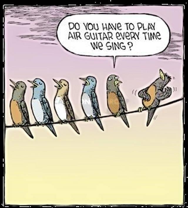 bird air guitar