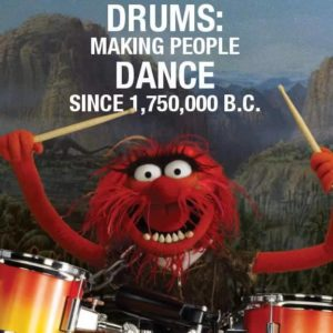 Animal drums