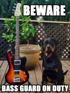 Bass guard dog