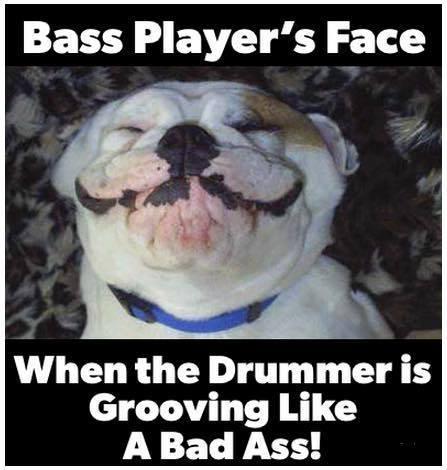 Bass dog drummer
