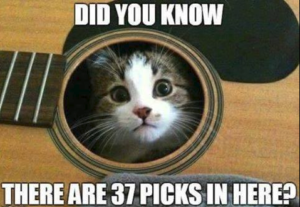 Cat guitar picks
