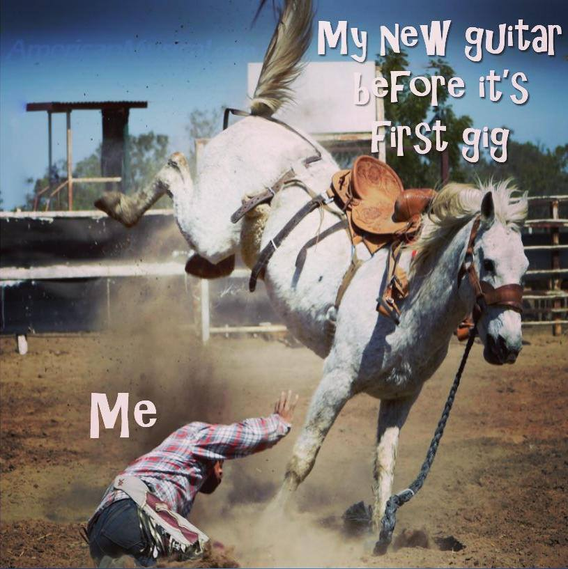 My new guitar horse