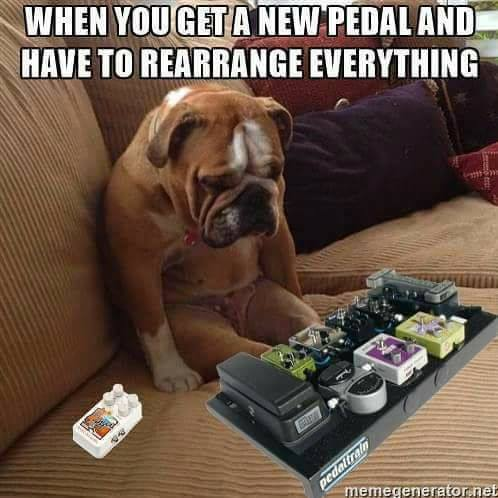 New pedal dog board