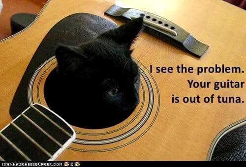 Guitar out of tuna