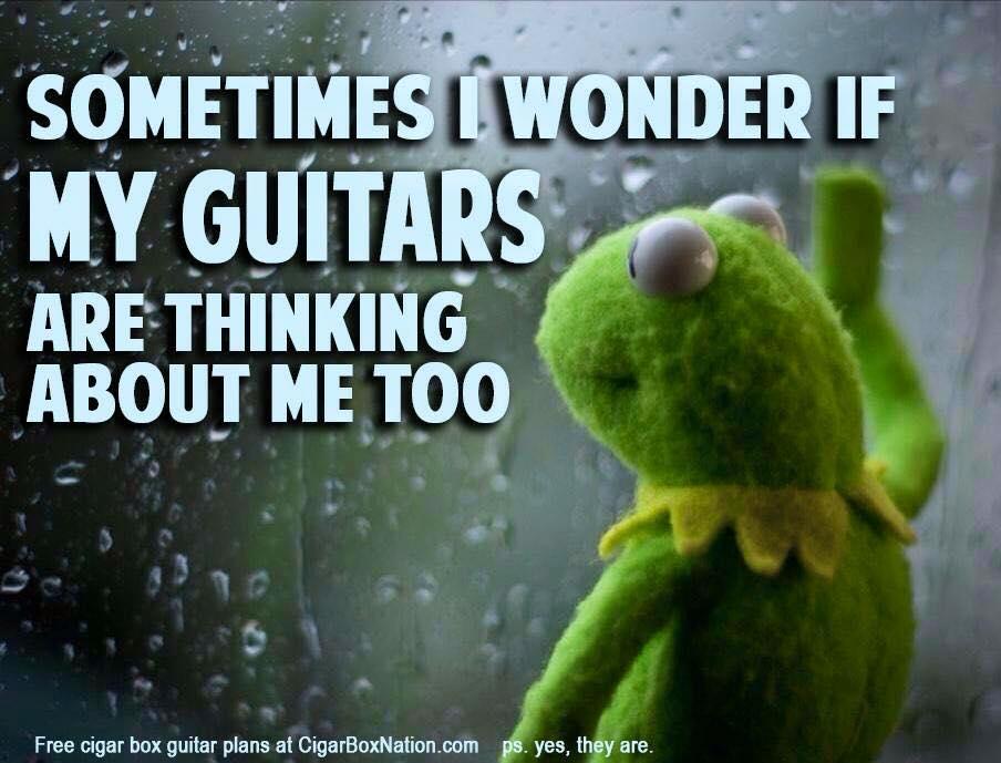 Kermit guitars