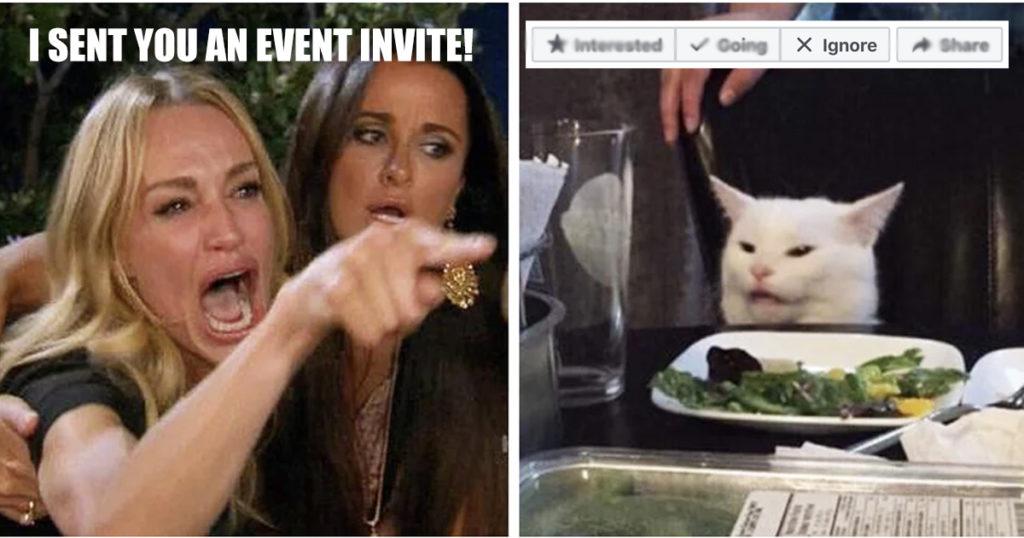 Smudge the cat ignores event invite