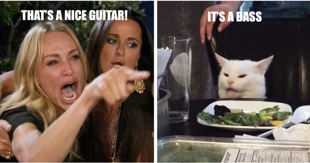 Smudge the cat plays bass
